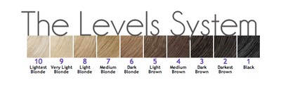 Hair color level system chart